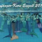 Anfaenger-Kurs-Eiszeit-2014-150x150