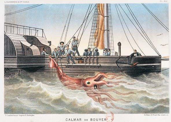 kraken_5