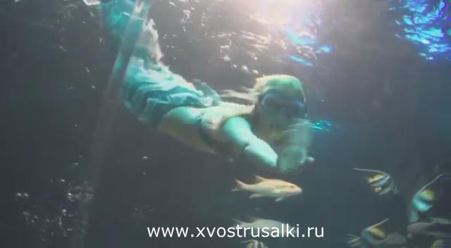 В океанариуме города Астана теперь есть своя русалка