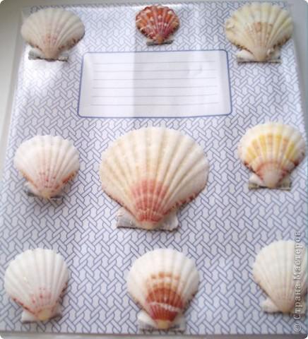 Обложка дневника русалки с ракушками