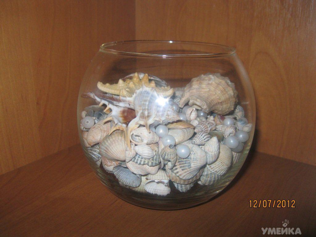 Мини аквариум с ракушками для декора