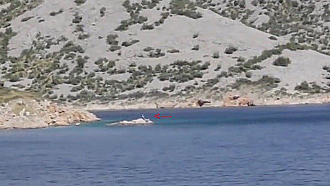 Нашли русалку в Испании