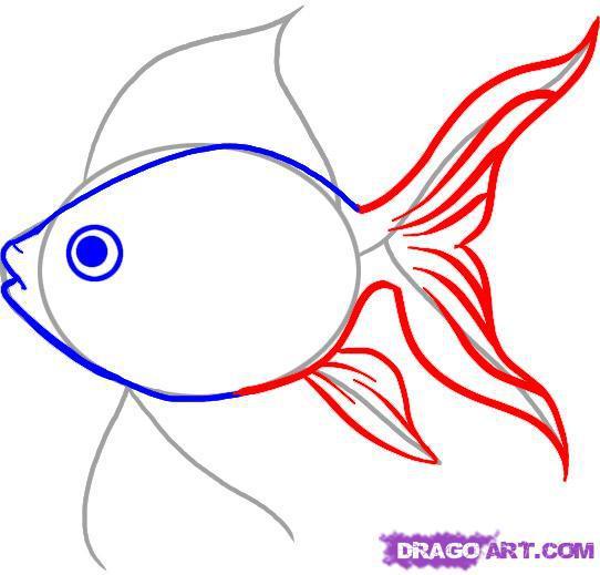 Рисуем золотую рыбку шаг 3