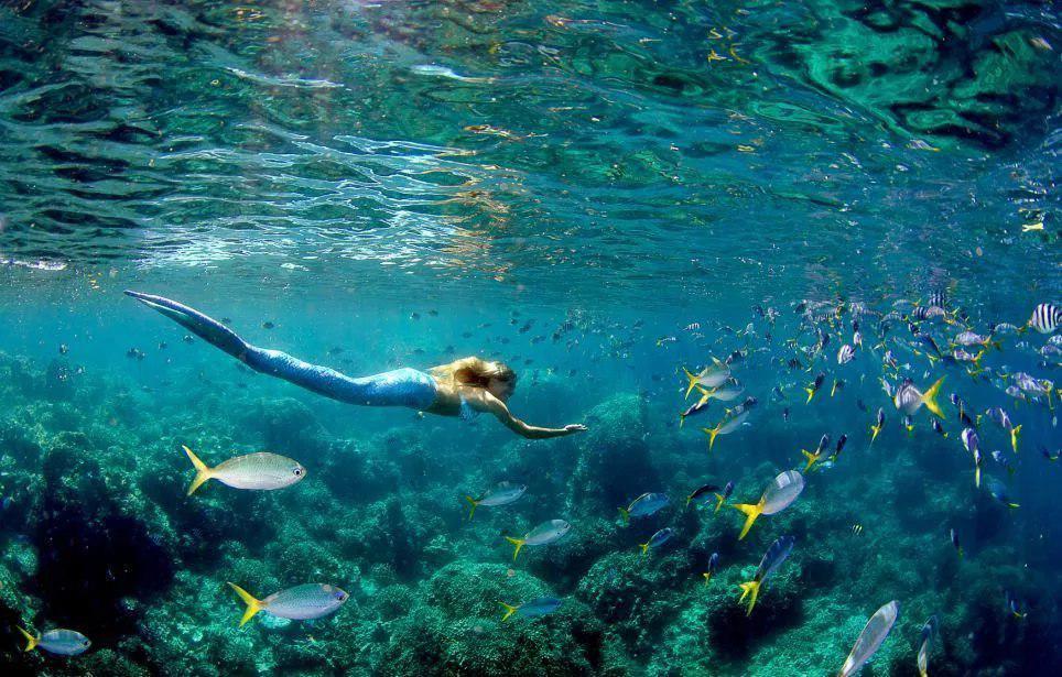Линден может погружаться под воду на большую глубину и задерживать дыхание до пяти минут.
