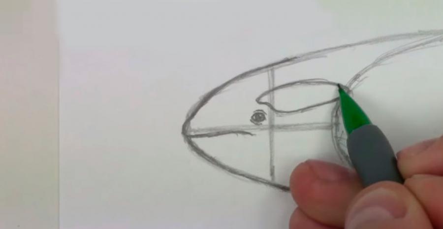 Рисуем касатку шаг 2.