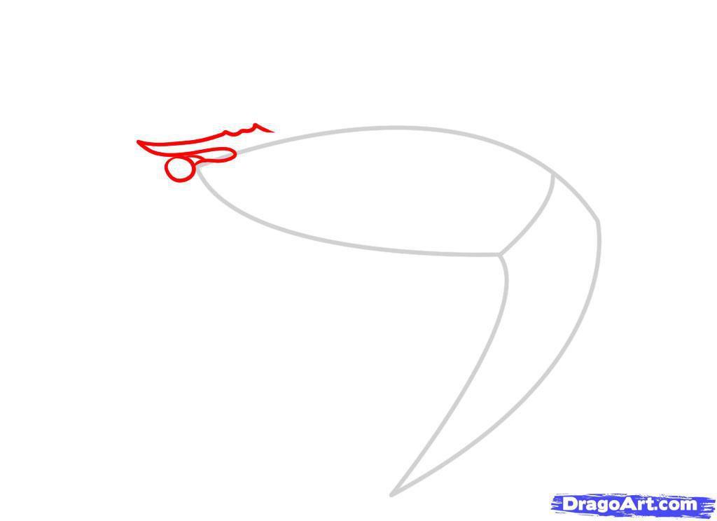 Как нарисовать креветку шаг 2