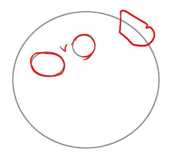 Как нарисовать морского ежа шаг 2.